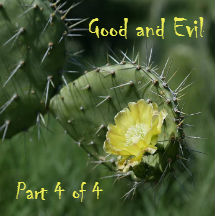 Pilgrim's Rock Blog Post by Dr. Craig Biehl - Does God Require Evil to Display His Glory? - Yellow Cactus Flower with Prickles