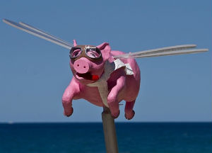 Art, Space Junk, and Ultimate Beauty - Weekly Blog Post by Dr. Craig Biehl - flying pink pig statue